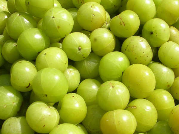 teps To Apply Amla For Hair
