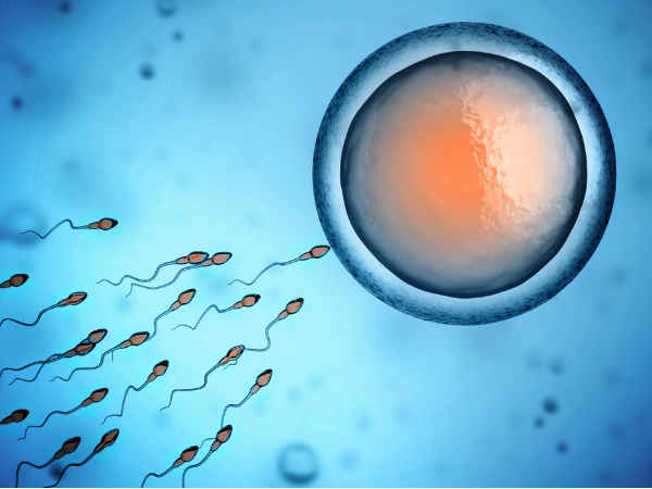 What Is Sperm Allergy