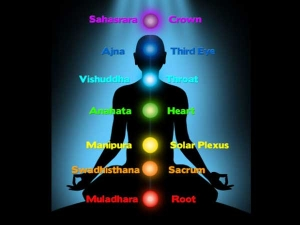 Basic Facts About Kundalini Yoga 016596 Pg