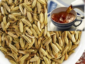 Best Ways Recipes Use Fennel Reduce Stomach Bloating