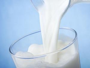 Cow S Milk Is Dangerous Your Baby