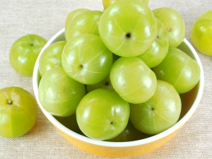 Everything You Need To Know About Consuming Amla During Pregnancy