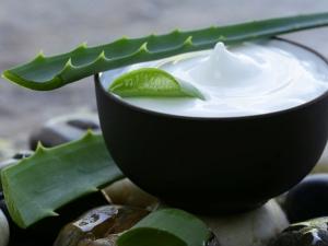 Aloe Vera Moisturiser Oily Skin
